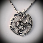Dragon of the Ouroboros!