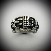 Viking Warrior Ring! Classic build.
